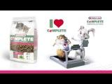 VERSELE-LAGA Chinchilla Complete комплексный корм для шиншилл и дегу
