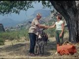 Кавказская пленница, или Новые приключения Шурика (1966) HD