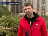 ТКТ-ТВ: На Приморском проспекте ищут неизвестных дровосеков (Роман Шайхайдаров)