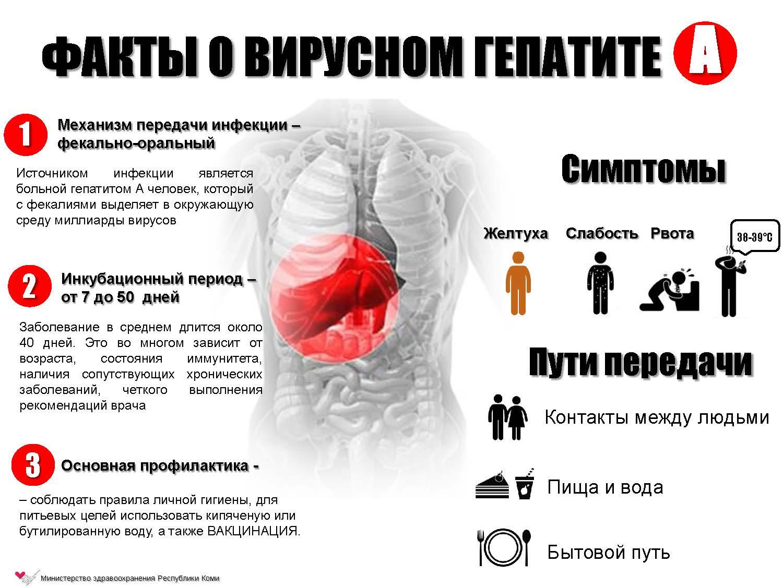 Прививки от гепатита взрослым реакции