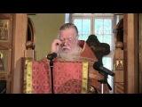 Димитрий Смирнов. Проповедь на неделю 6 ю по Пасхе, об исцелении слепорожденного