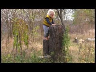 Украина: 1500 семей в 100-та Родовых Поместьях.
