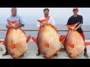 Самые Лучшие Приколы на рыбалке 2015 3