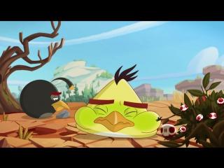 ЗЛЫЕ ПТИЧКИ - Angry Birds мультфильм - 2 сезон - 21 (Все серии в альбоме группы)
