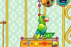 Игра Забота о попугае играть и скачать онлайн
