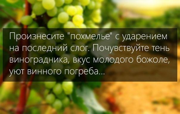 http://cs628720.vk.me/v628720040/45776/IkL8uzxy4Jc.jpg