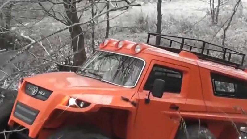 Снегоболотоход (2WD_4WD_6WD) «Литвина»