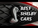 Best Shelby Cars Inspire Vol8