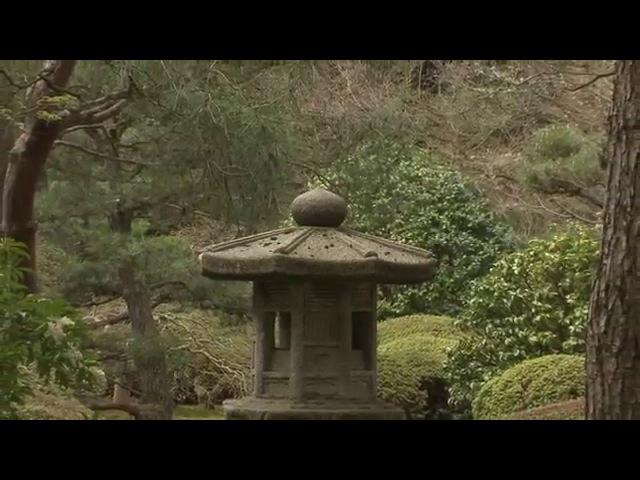 Живые Пейзажи: Сад Дзен (Сад камней)/Zen Garden.