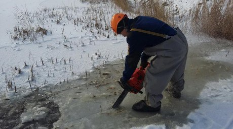 Спасатели МЧС вытащили провалившуюся под лед корову