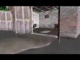 GTA Фильм - Укуренные из Vice City 5 (Stalker кор