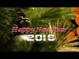 Поздравляем с Новым годом 2016! Пожелания внутри.