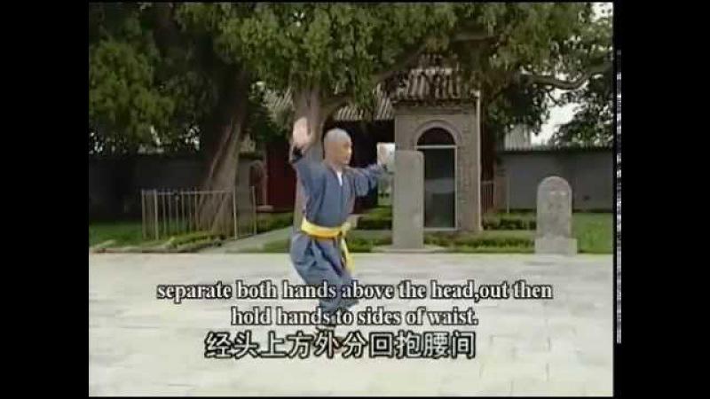 Шаолиньцюань Ба Бу Лян Хугн Цюань 8 шагов лотосового кулака вар 1 с разбором движений