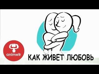 Короткометражный мультфильм. Как живет любовь!