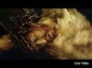 Шокирующее видео - Խաչվող մարդու տանջանքները նոր հոլովակ