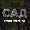 Smart-working САД