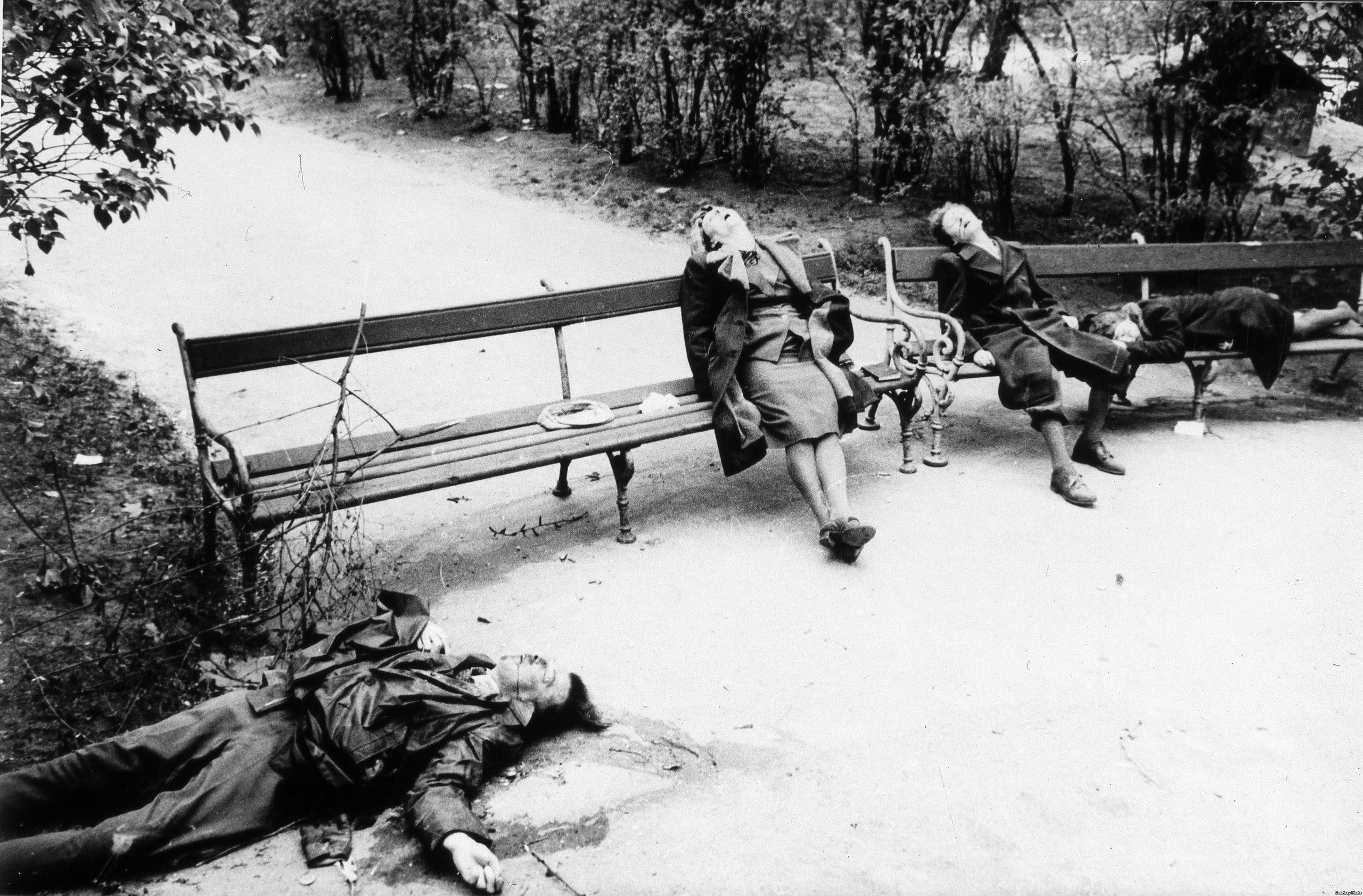 Сучки которые сбежали с ветнамцами 18 фотография