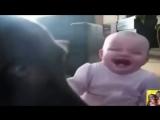 Подборка самого заразительного детского смеха!