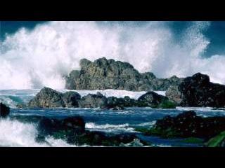 Звуки природы. Шум моря. Крик чаек.