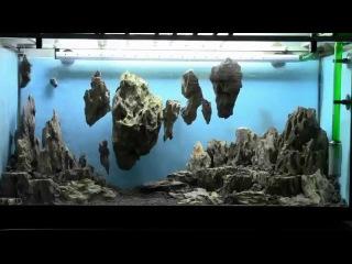 Allestimento acquario fantasy - Aquarium Setup - Aquascape: Esercitazioni Jedi STEP 1