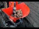 КМЗ-012 Картофелесажалка