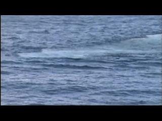 В.В.Шеломов-путин - Курск - Подводная Лодка в Мутной Воде - France 2 TeleVision - 2004 - Ю-720-HD - mp4