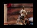 Волк и теленок - Советские мультики для детей
