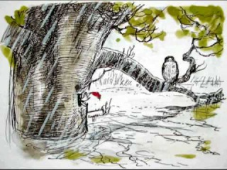 Winnie the Pooh - Chapter Nine - In which Piglet is Entirely Surrounded by Water (2 of 2)