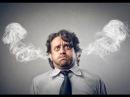 ▶ Почему вам в жизни не везет Лекция Неконтролируемый стресс и выученная беспо