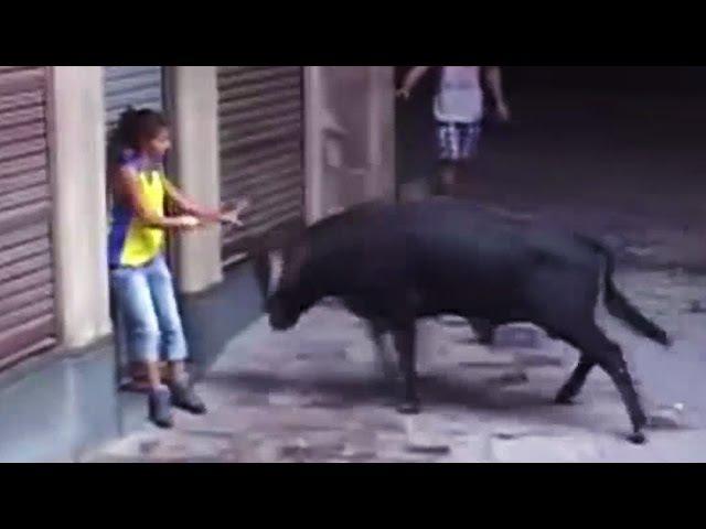 Cogida de Toro a Chica Encierros de Cardona
