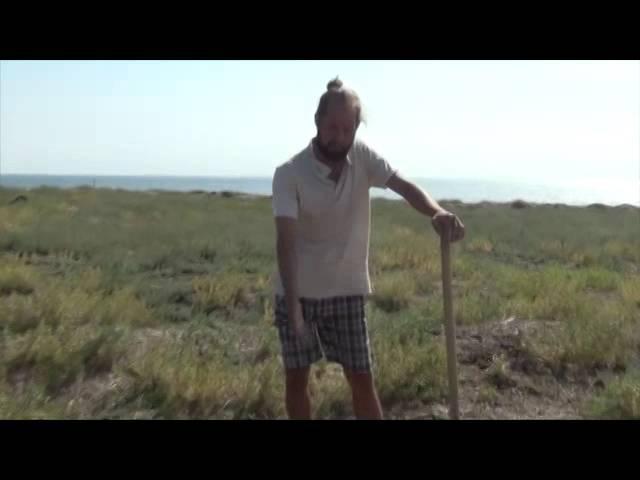 Уникальный метод посадки деревьев в полупустынном климате (Эко-курорт Морское)