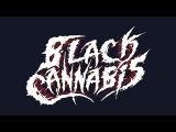 BLACK CANNABIS NEW DRUMMER