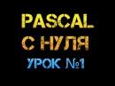 Урок 1 Паскаль с нуля Переменные и типы данных