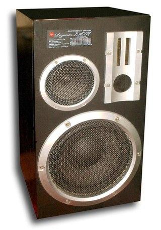 «Электроника Б1-01» — АС в