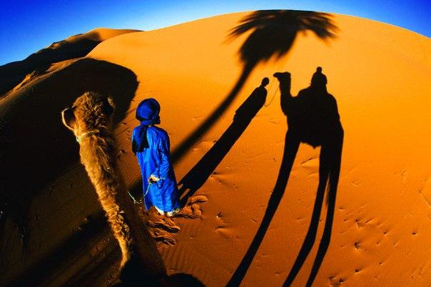 Sahra Çölü Nerede Hangi Kıtada Ülkededir