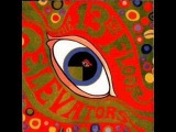 13th Floor Elevators - Thru The Rhythm