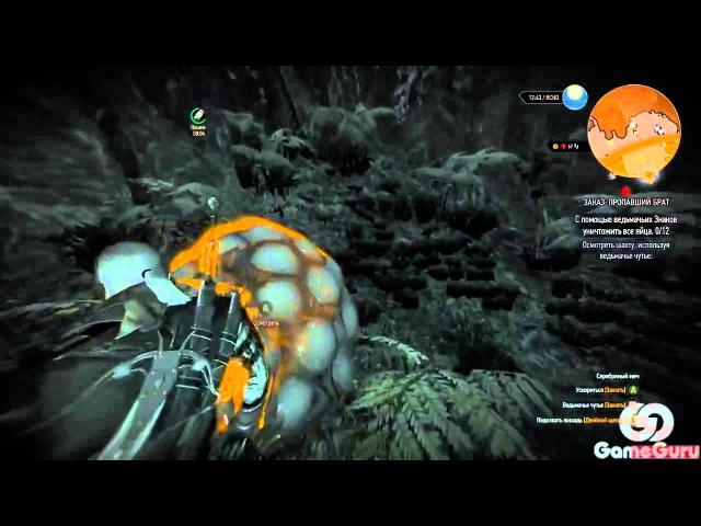 The Witcher 3: Wild Hunt - Пропавший брат. Главоглаз. Прохождение 68 | Gameplay Walkthrough aad