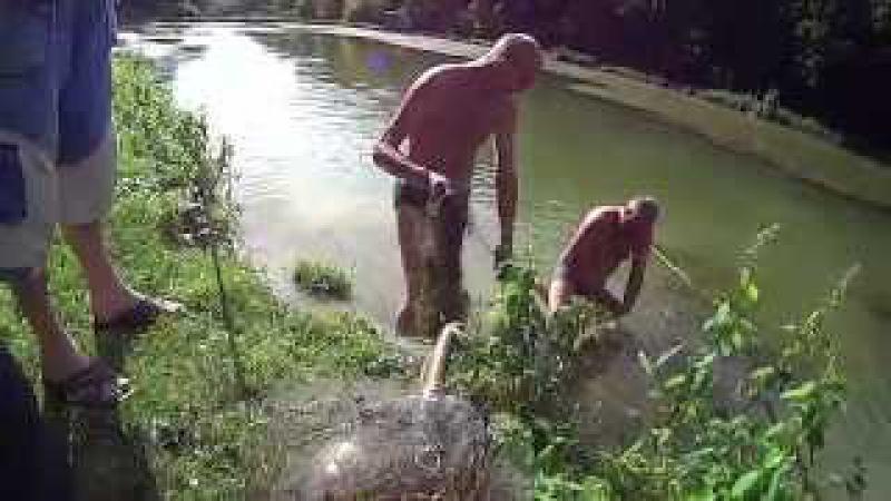Браконьєрство село Біла Чортківського району