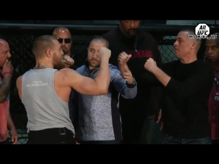Стердаун Нейт Диаз vs. Конор Макгрегор перед UFC 196