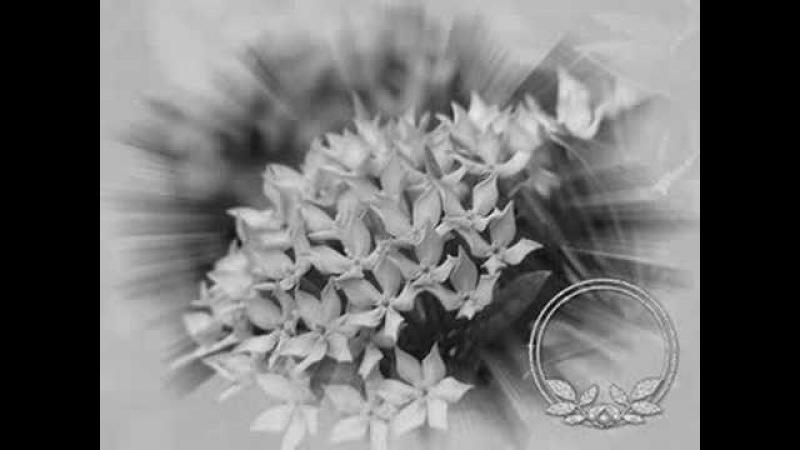Группа Кабриолет-Счастье прошлое