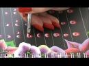 Manuale pratico One stroke Oxana Borzenkova