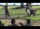 Секс в дикой Африке Жизнь племени Водаабе Интересный Документальный Фильм