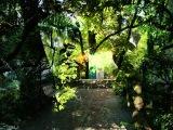 Oystein Sevag - Painful Love + The Door is Open (Jardines de Alfabia)