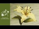 Как сделать красивую лилию из фоамирана мастер класс