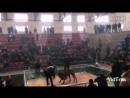 Bully kutta Red VS pit bull 3 (Собачьи бои  матчевый питбуль булли кутта)