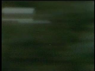 Сериал Коалы не виноваты / Don't Blame the Koalas. (2002)(Австралия)
