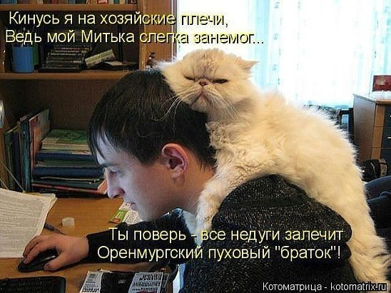 https://pp.vk.me/c628727/v628727301/2a67d/zLgmBXn2Gn0.jpg
