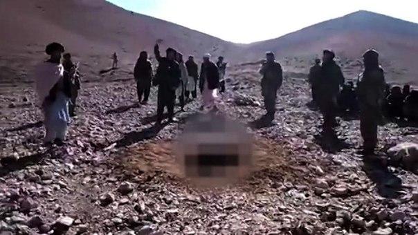 частное видео крушения самолета в казани