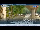 Наводнение в Тбилиси: песенка про большую крокодилу стала реальностью
