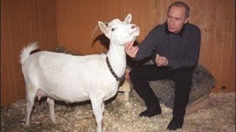 Напоминаем, что Путин - Хуйло Новая песня про Путлера